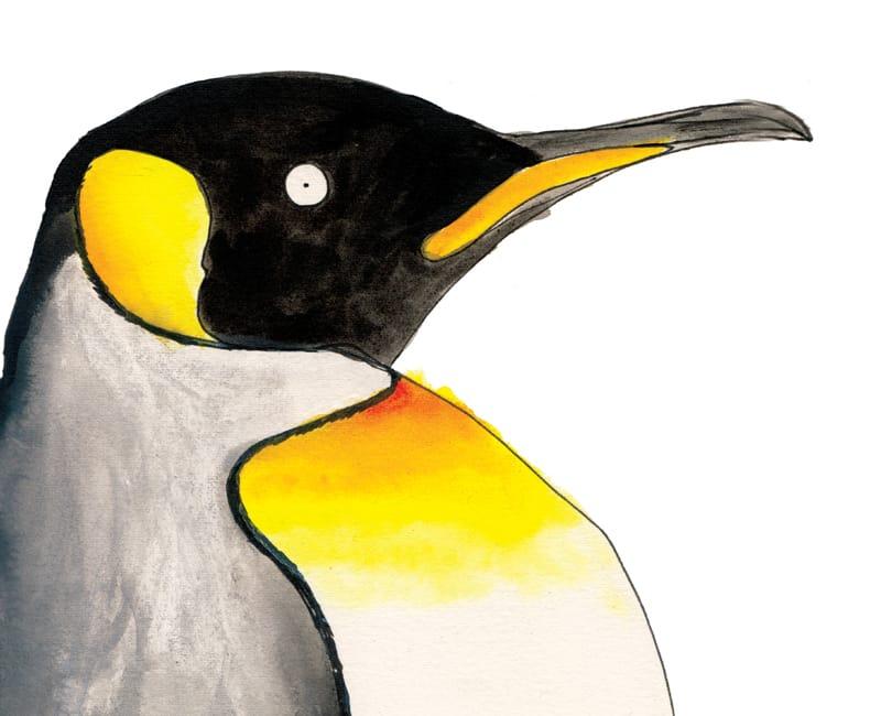 king penguin giclee art print