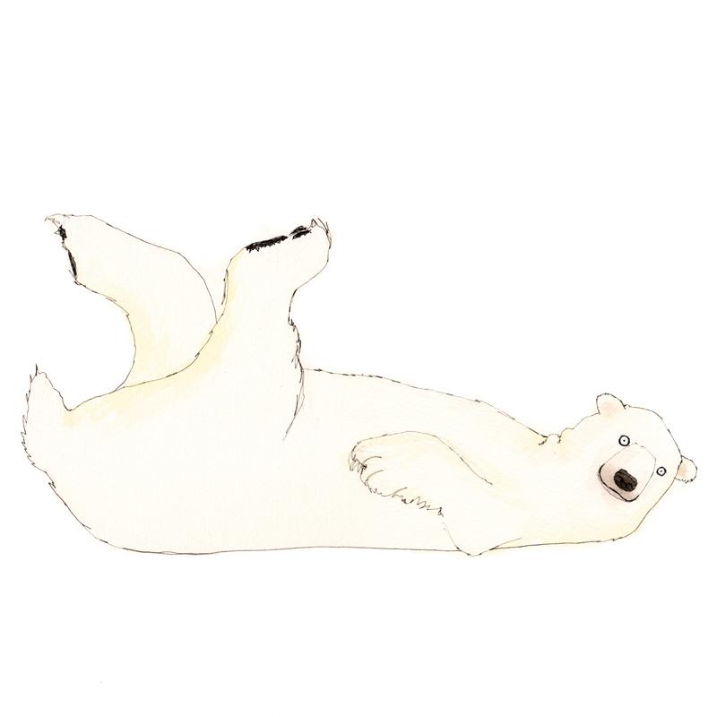 polar-bear-f