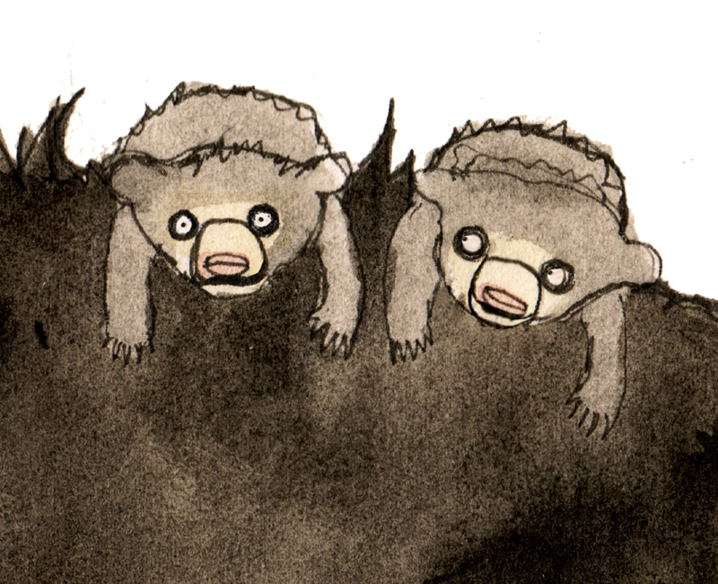 Sloth bear giclee art print