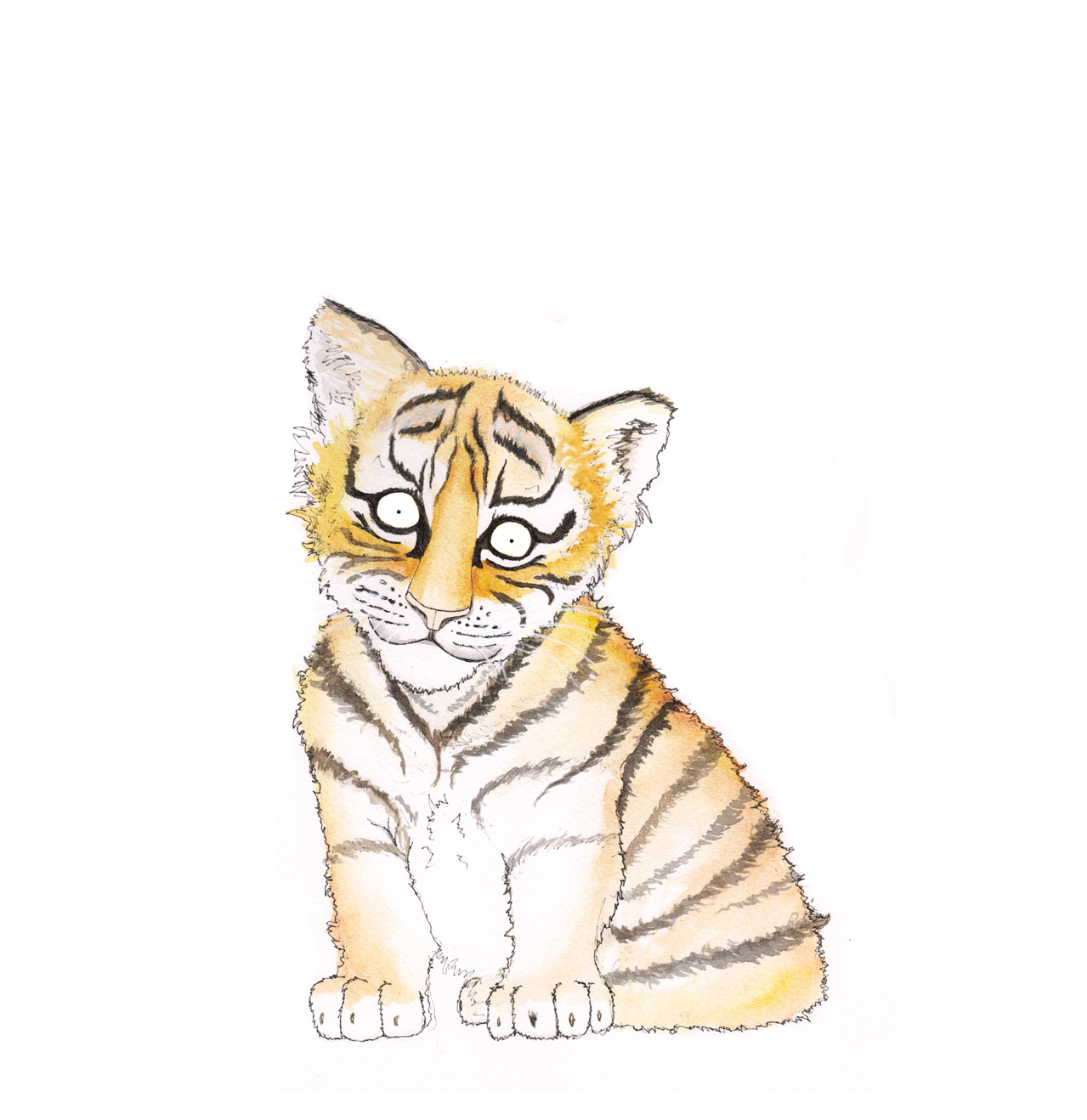 tiger-cub-sfw