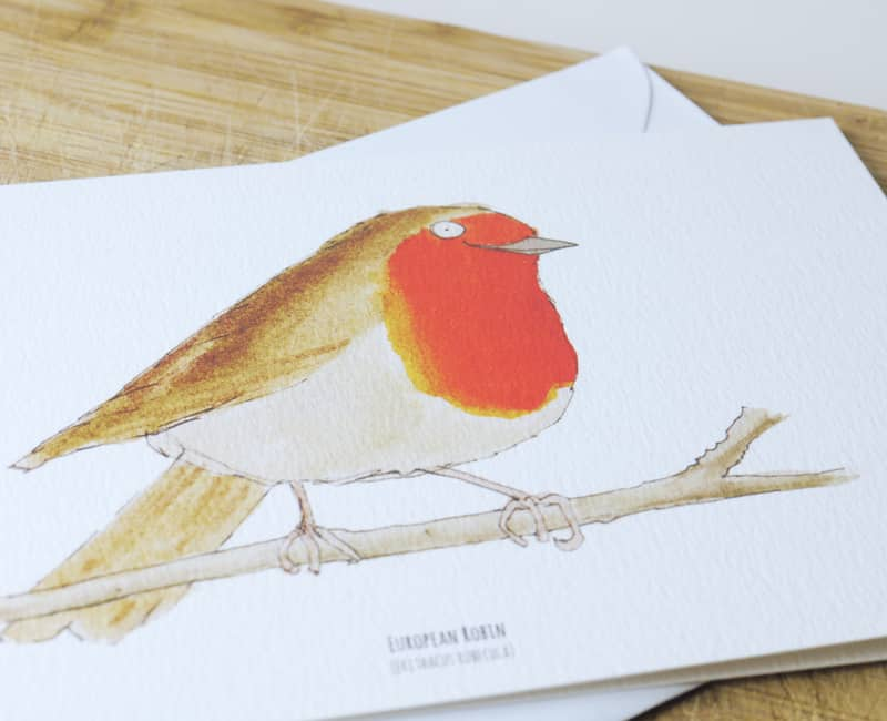 robin-front