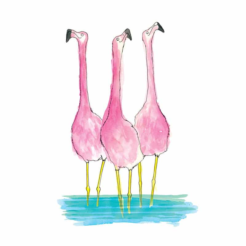 flamingo_giclee_print_featured
