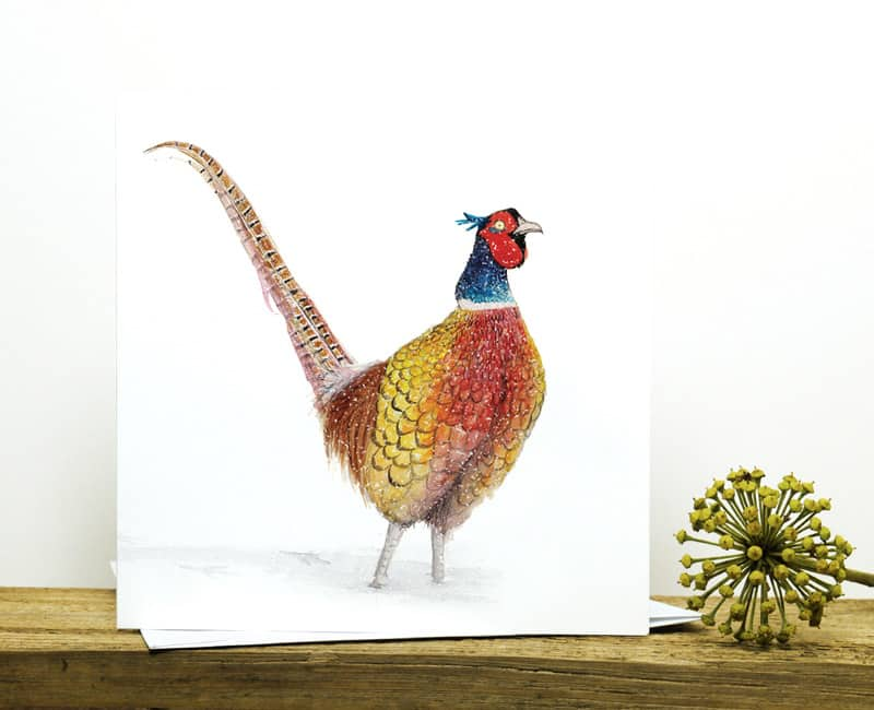 pheasant in snow recycled christmas card fure feathers and tails