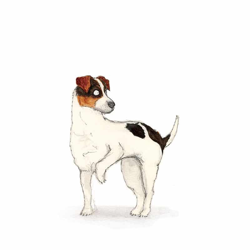 jack-russell-feat