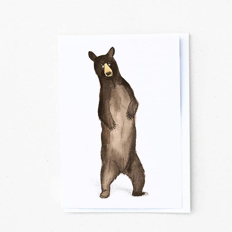 american-blak-bear