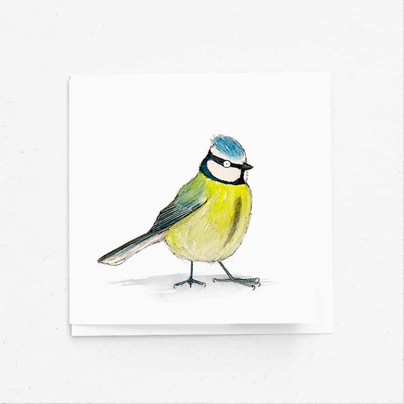 birds_blue-tit